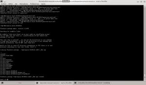 4-virtualbox-requerimientos-consola-instalacion-paquete-acpia-1